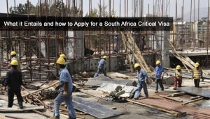What it Entails and how to Apply for a South Africa Critical Visa